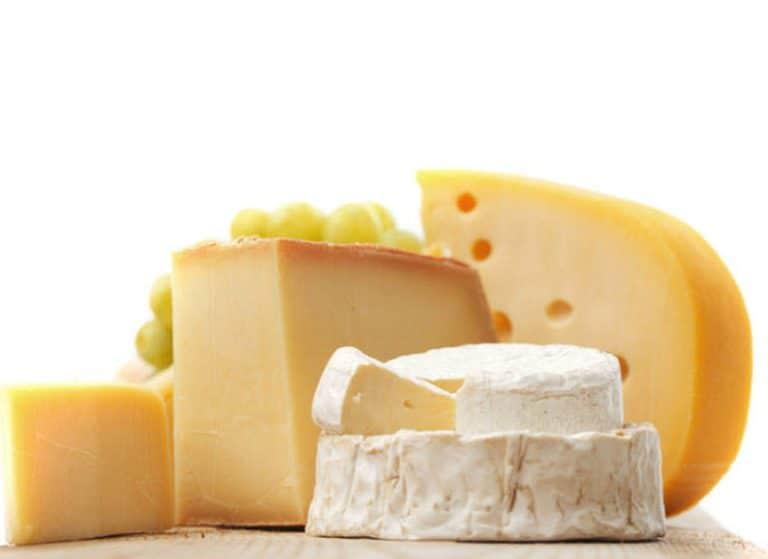 Käse lagern