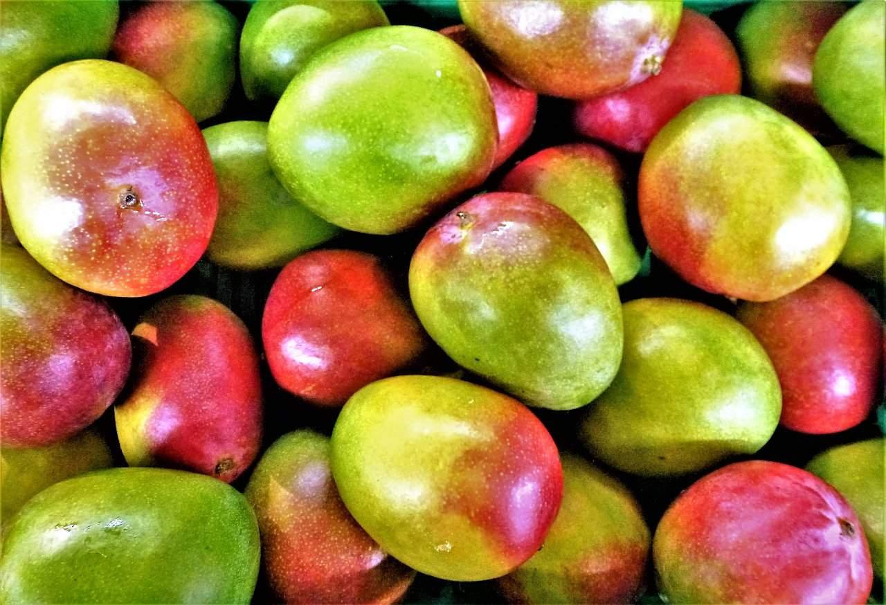 Warum Mango gesund ist