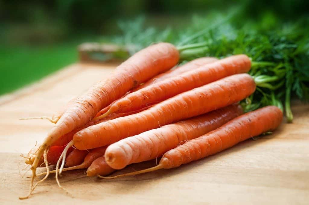 Karotten lagern