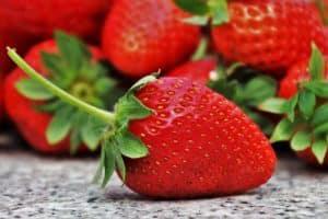 Erdbeere zuckerarm