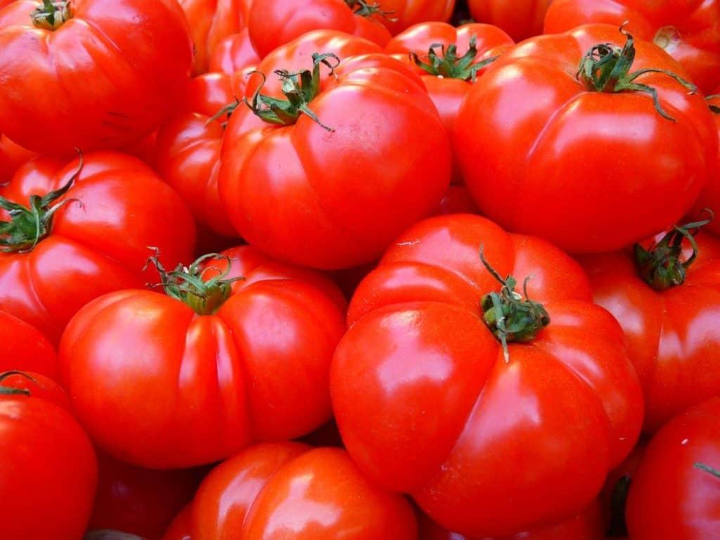 So lagert man Tomaten richtig